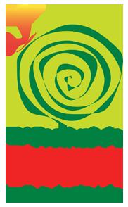 V Festival Gastronomia Orgânica