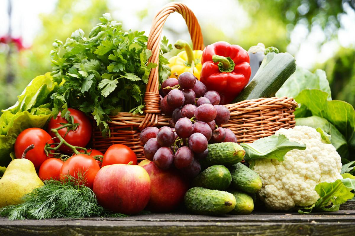 Plant-Based-Diet-Quero-harmonia